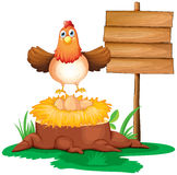 A chicken with a nest above a trunk near a signage Stock Images