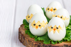 Chicken in nest, deviled eggs served with salad on wooden board, horizontal, copy space Royalty Free Stock Image