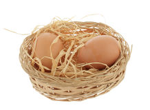 Chicken nest Royalty Free Stock Photos