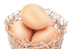 Chicken nest and a group of Easter eggs. Stock Photography