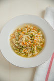 Chicken Noddle Soup Stock Image