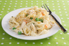 Chicken Noodle Casserole royalty free stock image