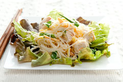 Chicken noodle salad. Diced chicken with rice noodles in cool summer salad Royalty Free Stock Photo