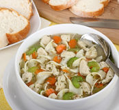 Chicken and Noodle Soup Stock Photo