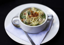 Chicken noodle soup Stock Photos