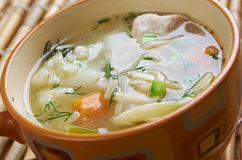 Chicken noodle soup - broth. Closeup Royalty Free Stock Photography