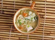 Chicken noodle soup - broth. Stock Photography