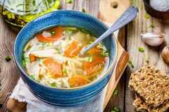 Chicken noodle soup with carrots and green onions Royalty Free Stock Photos