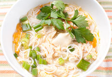 Chicken noodle soup closeup Royalty Free Stock Images