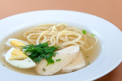 Chicken noodle soup with egg and greenery Royalty Free Stock Photo