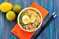 Chicken noodle soup with green onion, ginger, coriander and chili pepper. Asian cuisine. Royalty Free Stock Images