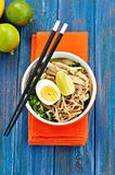 Chicken noodle soup with green onion, ginger, coriander and chili pepper. Asian cuisine. Stock Images