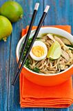 Chicken noodle soup with green onion, ginger, coriander and chili pepper. Asian cuisine. Stock Photos