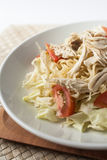 Chicken noodle spicy soup indonesia cuisine. Traditional food from indonesia, called mie jawa or java noodle. some noodle with cabbage, tomato, chicken, with stock photography