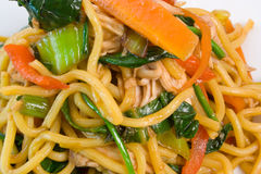 Chicken and Noodle Stir Fry. Delicious Chicken and Noodle Stir Fry Royalty Free Stock Photos