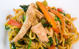 Chicken and Noodle Stir Fry Stock Photos