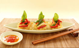 Chicken On Noodles Royalty Free Stock Photos