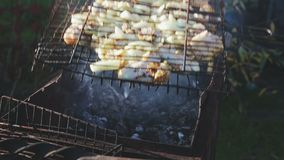 Chicken and onions cooked on the barbecue grill stock video
