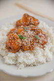 Chicken with orange sauce and rice in a bowl Royalty Free Stock Photos