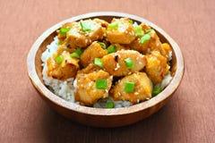 Chicken with orange sauce Royalty Free Stock Photos