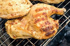 Chicken over a fire Stock Photography