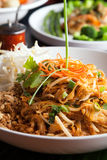Chicken Pad Thai Closeup Stock Images