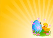 Chicken Painting Easter Egg Background. Background with Easter Chicken painting an egg Stock Photography
