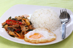 Chicken panang curry with rice anf fried egg Royalty Free Stock Image