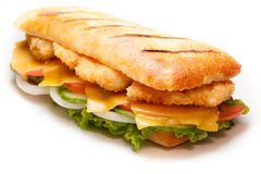 Chicken pannini sandwich Royalty Free Stock Photos