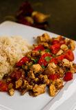 Chicken with paprika rice and curry dish Royalty Free Stock Photos