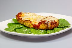 Chicken Parmesan on a bed of spinach with a sprinkle of fresh parmesan cheese on top on a white plate stock images