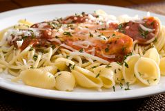 Chicken parmesan and noodles Royalty Free Stock Photo