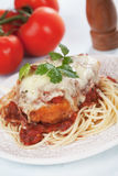 Chicken parmesan with spaghetti pasta. Chicken parmesan with melted cheese and tomato sauce served over spaghetti pasta Stock Images