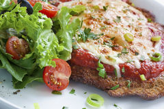 Chicken Parmigiana. With salad. Melting parmesan and mozzarella cheeses over an Italian tomato sauce royalty free stock images