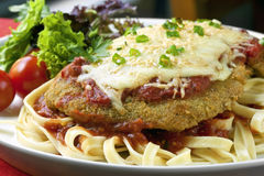 Chicken Parmigiana. Over fettucine, with a side salad royalty free stock photography