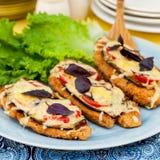 Chicken Parmigiana. _ Chicken Fillet, Eggplant, Tomato, Basil Royalty Free Stock Photos