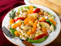 Chicken Pasta Fruit Salad Royalty Free Stock Photo