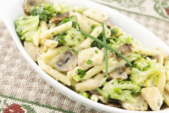 Chicken Pasta Primavera Stock Photo