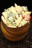 Chicken Pasta Salad Royalty Free Stock Photography
