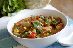 Chicken pasta soup Royalty Free Stock Photography