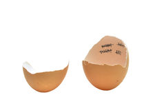 Chicken patience. Hen bird chicken baby patience marks on eggshell over white Stock Photos