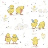 Chicken pattern Stock Photography