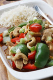 Chicken, peppers & cashew nuts stir fry Stock Images