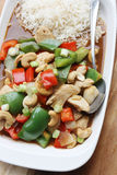 Chicken, peppers & cashew nuts stir fry. A simple chicken, peppers & cashew nuts stir fry with oyster and soy sauces royalty free stock photos