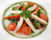 Chicken Pesto Salad Royalty Free Stock Images