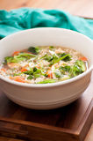 chicken pho soup with vegetables and noodles Royalty Free Stock Image