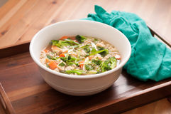 chicken pho soup with vegetables and noodles Stock Images