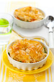 Chicken  pie Royalty Free Stock Image