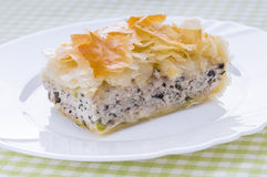 Chicken pie of filo dough. Tasty and very hearty pie Royalty Free Stock Photography