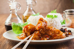 Chicken pieces with rice and sweet and sour sauce Royalty Free Stock Photos